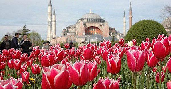 Istanbulski Festival tupliana